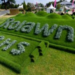 Freestyle Turfing at Hampton Court Flower Show 2015